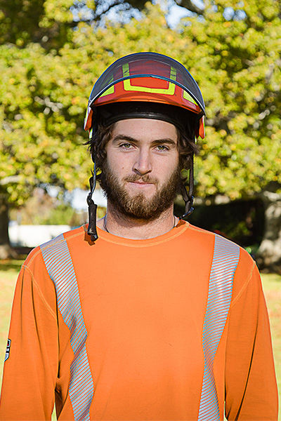 Gisborne number one Arborist